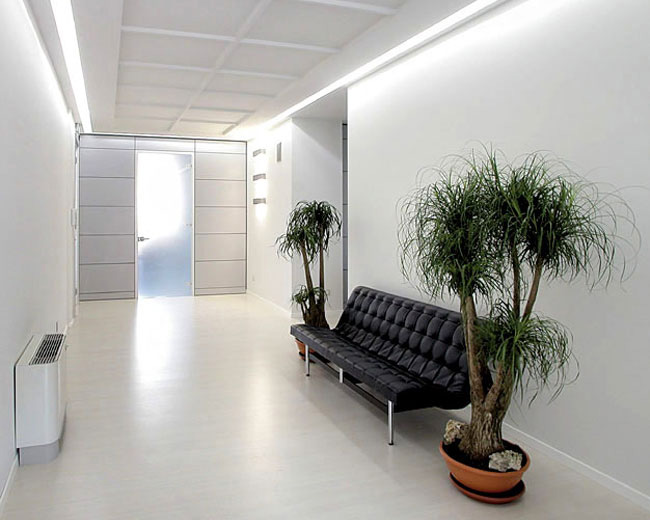 One Partitions Photo 29